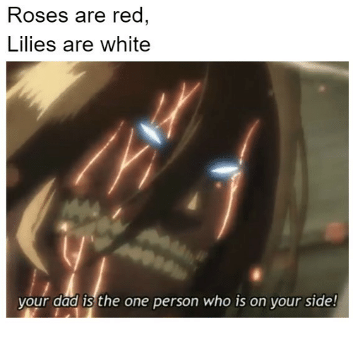 lilies: Roses are red  Lilies are white  your dad is the one person who is on vour side