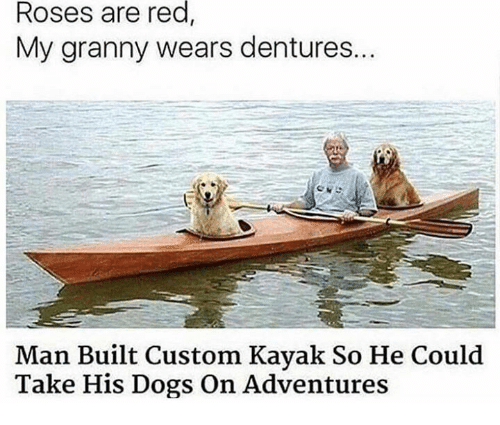 Dogs, Kayak, and Red: Roses are red  My granny wears dentures..  Man Built Custom Kayak So He Could  Take His Dogs On Adventures