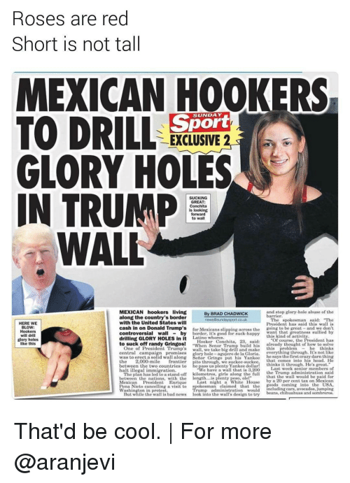 "Rose Are Red: Roses are red  Short is not tall  MEXICAN HOOKERS  TO DRILL  Sport  EXCLUSIVE 2  GLORY HOLES  IN TRUMP  SUCKING  GREAT:  Conchita  is looking  forward  to wal  WALL  MEXICAN hookers living  and stop glory hole abuse of the  By BRAD CHADWICK  barrier.  along the country's border  The spokesman said: ""The  news Sunday sport co.uk  with the United States will  HERE WE  President has said this wall is  BLOW:  cash in on Donald Trump's  for Mexicans ng across the  going to be great  and we don't  Hookers  Wall  controversial by  will drill  drilling GLORY HOLES in it  Latino whores  Of course, the  glory holes  Hooker Conchita, 28, said  to suck off randy Gringos!  When Senior Trum  build his  already thought of how to solve  One of President Trump's  like this  central campa  glory hole  agujero de la Gloria  he says the first crazy darn thing  along Senior Gringo put his Yankee  the  2,000-mile  frontier  pito through, we suckee suckee, that comes into his head. He  thinks it through. He's great.  between the two countries to  Last week senior members of  halt illegal immigration.  We have a wall that is 3,200  the Trump administration said  The plan has led to a stand-off kilometres  that the wall wou  with the length  between the nations  by a 20 per cent tax on Mexican  Mexican President Enrique  Last night a White  House  oods coming  nto the USA  ng a visit to  spokesman claimed that the  Pena Nieto cance  uding cars, avocados, jumping  Washington in protest.  beans, chihuahuas and sombreros  But while the wa  s bad news  ook into the wa  s design to try That'd be cool. 