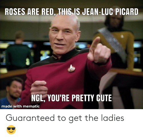 Cute, Red, and Roses: ROSES ARE RED, THIS IS JEAN-LUC PICARD  NGL, YOU'RE PRETTY CUTE  made with mematic Guaranteed to get the ladies 😎