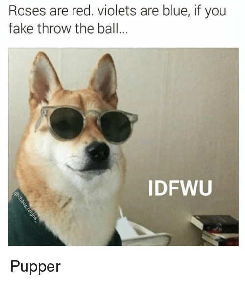 Rose Are Red: Roses are red. violets are blue, if you  fake throw the ball  ID FWU Pupper