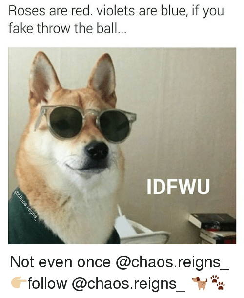 Rose Are Red: Roses are red. Violets are blue, if you  fake throw the ball  IDFWU Not even once @chaos.reigns_ 👉🏼follow @chaos.reigns_ 🐕🐾