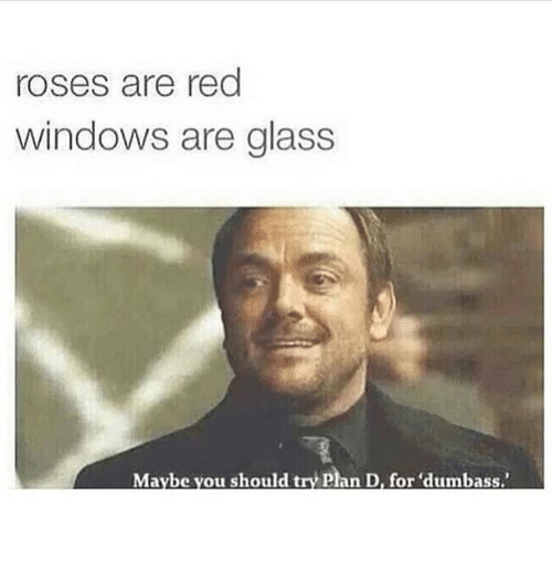Rose Are Red: roses are red  windows are glass  Maybe you should try plan D, for dumbass.'