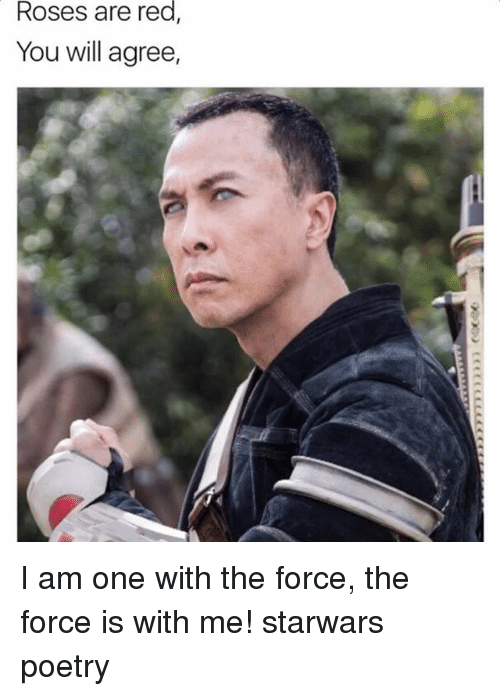 Memes, Poetry, and 🤖: Roses are red  You will agree, I am one with the force, the force is with me! starwars poetry