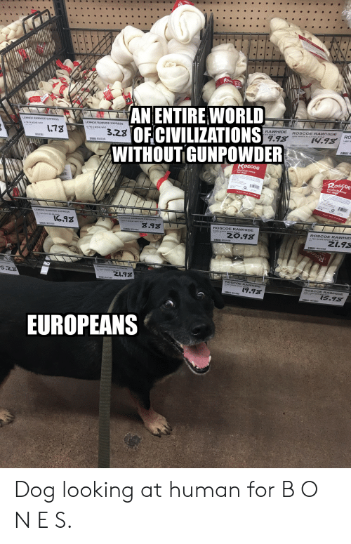 Dogs, Express, and White: Ross  AN ENTIRE WORLD  3.23 OF CIVILIZATIONS  WITHOUT GUNPOWDER  LENNOX RAWHIDE EXPRESS  LENNOX RAWHIDE EXPRESS  E RAWHIDE  4-5IN K-BONE WHT  ROSCOE RAWHIDE  RO  6-7IN K-BONE WHT  178  16IN WHITE KNOTTED BONE  9.98  14.98  EA/30 P  14IN W  I  Roscoe  for dogs  Roscoe  bee  for dog ones  12-13N GNT RH KB WHT  16.98  8.98  ROSCOE RAWHIDE  E  ROSCOE RAWHID  ZO.98  Z1.98  Roscoo  528  Z1.98  IN WH OE RA WHIDE  19.98  ROSCOE RAWHIDE  15.98  EUROPEANS Dog looking at human for B O N E S.
