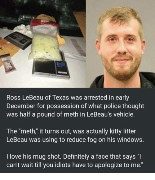 "Mething: Ross LeBeau of Texas was arrested in early  December for possession of what police thought  was half a pound of meth in LeBeau's vehicle.  The ""meth,"" it turns out, was actually kitty litter  LeBeau was using to reduce fog on his windows.  I love his mug shot. Definitely a face that says ""I  can't wait till you idiots have to apologize to me."""
