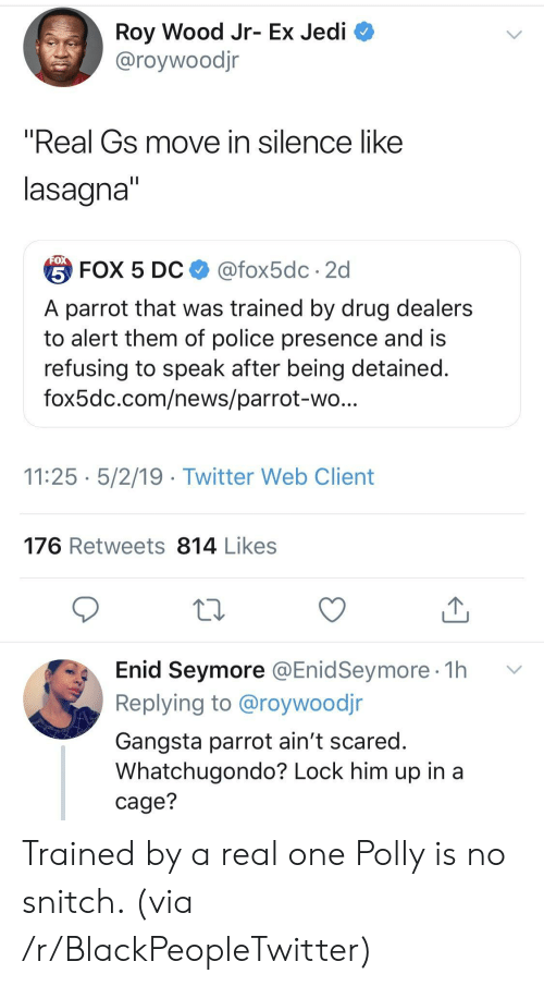 "Blackpeopletwitter, Gangsta, and Jedi: Roy Wood Jr- Ex Jedi  @roywoodjr  ""Real Gs move in silence like  lasagna  台FOX 5 DC $ @fox5dc . 2d  A parrot that was trained by drug dealers  to alert them of police presence and is  refusing to speak after being detained  fox5dc.com/news/parrot-wo  11:25 5/2/19 - Twitter Web Client  176 Retweets 814 Likes  Enid Seymore @EnidSeymore 1h v  Replying to @roywoodjr  Gangsta parrot ain't scared  Whatchugondo? Lock him up in a  cage? Trained by a real one Polly is no snitch. (via /r/BlackPeopleTwitter)"