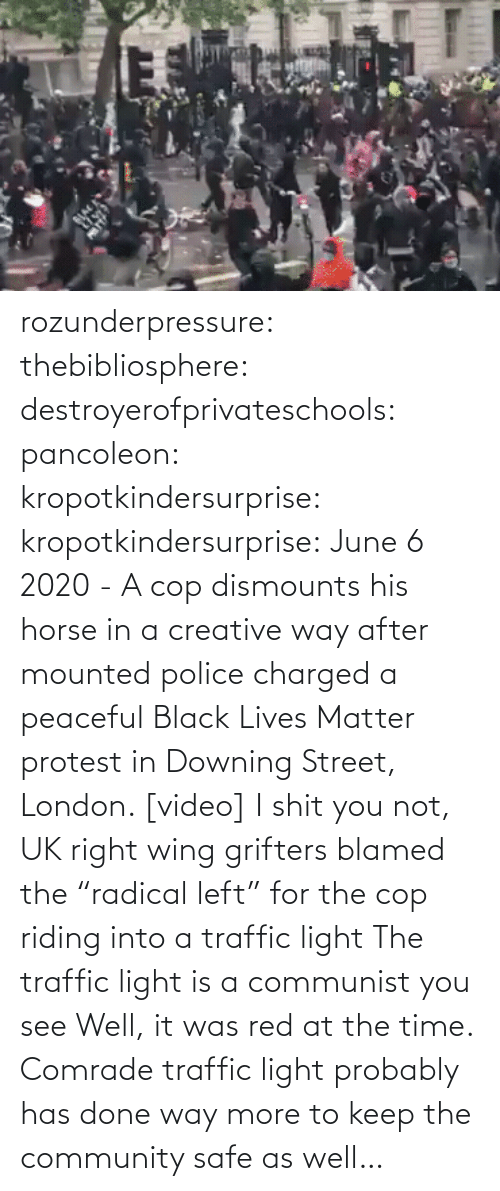 "community: rozunderpressure:  thebibliosphere: destroyerofprivateschools:  pancoleon:   kropotkindersurprise:  kropotkindersurprise: June 6 2020 - A cop dismounts his horse in a creative way after mounted police charged a peaceful Black Lives Matter protest in Downing Street, London. [video]    I shit you not, UK right wing grifters blamed the ""radical left"" for the cop riding into a traffic light    The traffic light is a communist you see    Well, it was red at the time.  Comrade traffic light probably has done way more to keep the community safe as well…"