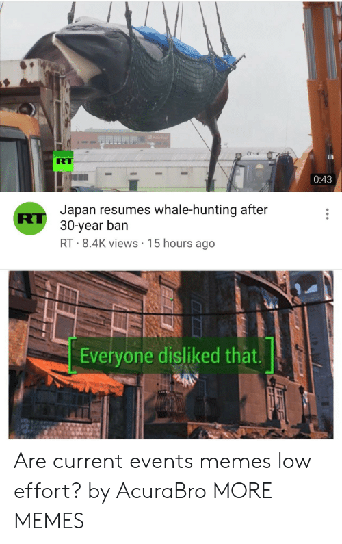 Dank, Memes, and Target: RT  0:43  Japan resumes whale-hunting after  RU 30-year ban  RT 8.4K views 15 hours ago  Everyone disliked that. Are current events memes low effort? by AcuraBro MORE MEMES