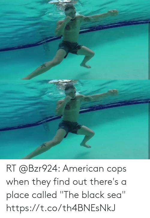 """cops: RT @Bzr924: American cops when they find out there's a place called """"The black sea"""" https://t.co/th4BNEsNkJ"""