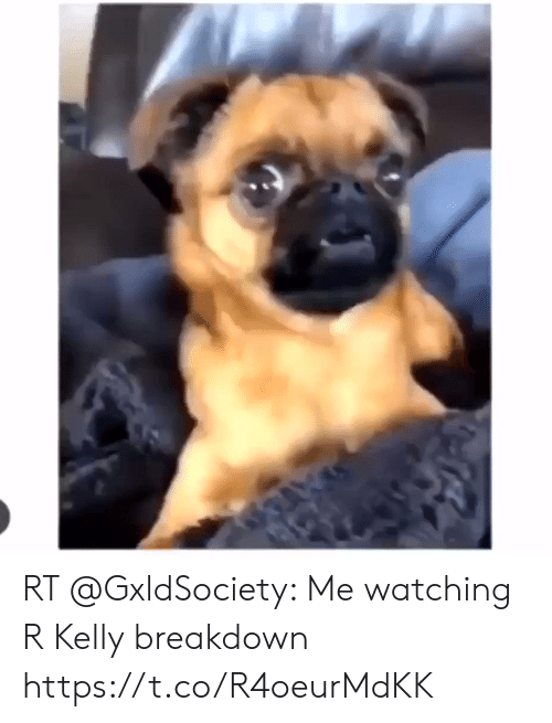 Memes, R. Kelly, and 🤖: RT @GxldSociety: Me watching R Kelly breakdown https://t.co/R4oeurMdKK