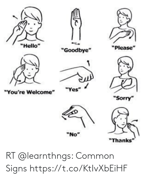 Memes, Common, and 🤖: RT @learnthngs: Common Signs https://t.co/KtIvXbEiHF