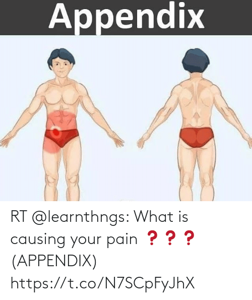 What Is: RT @learnthngs: What is causing your pain ❓❓❓ (APPENDIX) https://t.co/N7SCpFyJhX