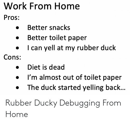 rubber: Rubber Ducky Debugging From Home