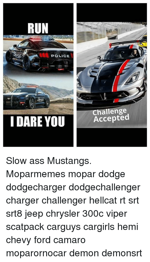 Ass, Memes, and Police: RUN  POLICE  Challenge  I DARE YOUAccepted Slow ass Mustangs. Moparmemes mopar dodge dodgecharger dodgechallenger charger challenger hellcat rt srt srt8 jeep chrysler 300c viper scatpack carguys cargirls hemi chevy ford camaro moparornocar demon demonsrt