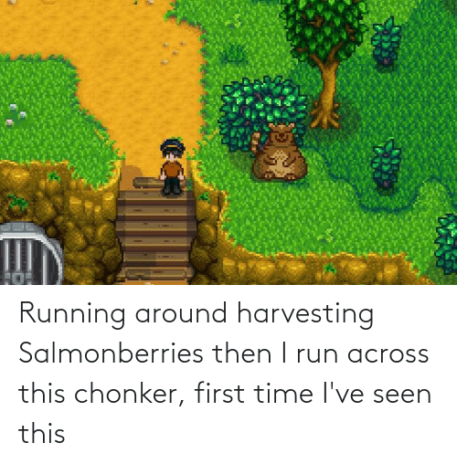 Harvesting: Running around harvesting Salmonberries then I run across this chonker, first time I've seen this