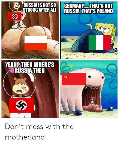 mess: RUSSIA IS NOT SO  STRONG AFTER ALL  GERMANY. THAT'S NOT  RUSSIA, THAT'S POLAND  YEAH? THEN WHERE'S  RUSSIA THEN Don't mess with the motherland