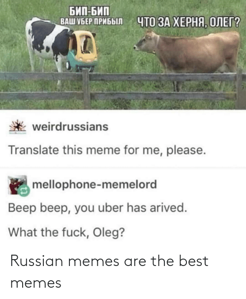 Memes Are: Russian memes are the best memes