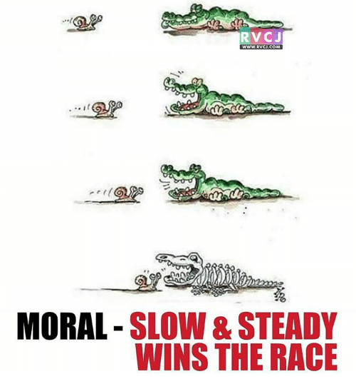steady-wins-the-race: RVCJ  WWW. RVCJ.COM  MORAL  SLOW& STEADY  WINS THE RACE
