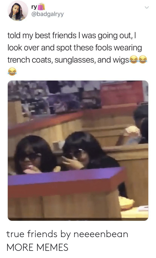 Dank, Friends, and Memes: ry  @badgalryy  told my best friends I was going out, I  look over and spot these fools wearing  trench coats, sunglasses, and wigs true friends by neeeenbean MORE MEMES