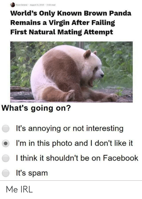 Panda: Ryan General  August 31,2018 3min read  World's Only Known Brown Panda  Remains a Virgin After Failing  First Natural Mating Attempt  What's going on?  It's annoying or not interesting  I'm in this photo and I don't like  I think it shouldn't be on Facebook  It's spam Me IRL