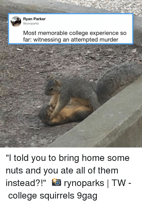 "9gag, College, and Memes: Ryan Parker  @rynoparks  Most memorable college experience so  far: witnessing an attempted murder ""I told you to bring home some nuts and you ate all of them instead?!""⠀ 📸 rynoparks 