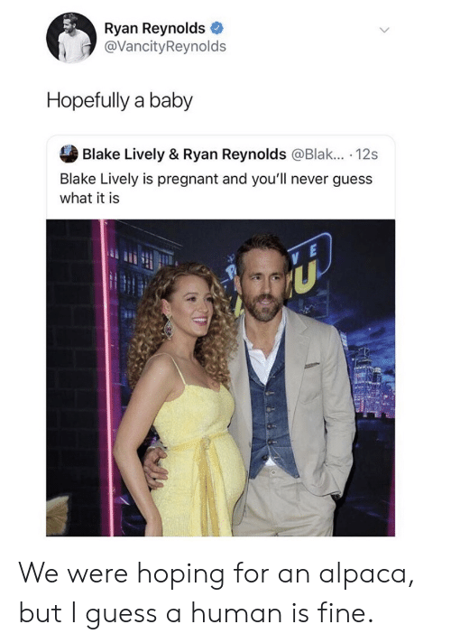 blake: Ryan Reynolds  @VancityReynolds  Hopefully a baby  Blake Lively & Ryan Reynolds @Blak... . 12s  Blake Lively is pregnant and you'll never guess  what it is We were hoping for an alpaca, but I guess a human is fine.