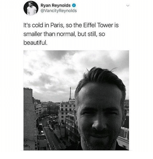 Beautiful, Dank, and Ryan Reynolds: Ryan Reynolds  @VancityReynolds  It's cold in Paris, so the Eiffel Tower is  smaller than normal, but still, so  beautiful.