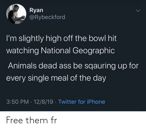 Meal: Ryan  @Rybeckford  I'm slightly high off the bowl hit  watching National Geographic  Animals dead ass be sqauring up for  every single meal of the day  3:50 PM · 12/8/19 · Twitter for iPhone Free them fr