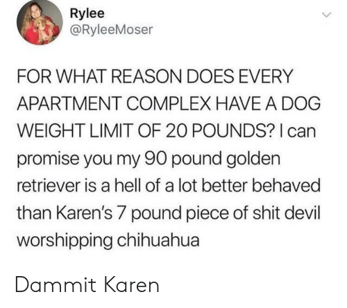 Chihuahua, Complex, and Shit: Rylee  @RyleeMoser  FOR WHAT REASON DOES EVERY  APARTMENT COMPLEX HAVE A DOG  WEIGHT LIMIT OF 20 POUNDS? can  promise you my 90 pound golden  retriever is a hell of a lot better behaved  than Karen's 7 pound piece of shit devil  worshipping chihuahua Dammit Karen