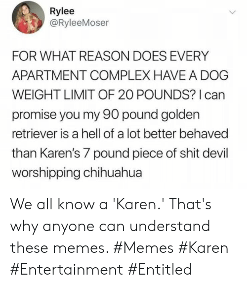 Chihuahua, Complex, and Memes: Rylee  @RyleeMoser  FOR WHAT REASON DOES EVERY  APARTMENT COMPLEX HAVE A DOG  WEIGHT LIMIT OF 20 POUNDS? I can  promise you my 90 pound golden  retriever is a hell of a lot better behaved  than Karen's 7 pound piece of shit devil  worshipping chihuahua We all know a 'Karen.' That's why anyone can understand these memes. #Memes #Karen #Entertainment #Entitled
