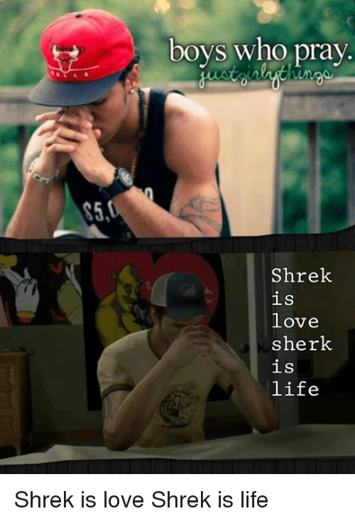 shrek is love shrek is life: S5  boys who pray.  Shrek  is  love  sherk  is  life Shrek is love Shrek is life