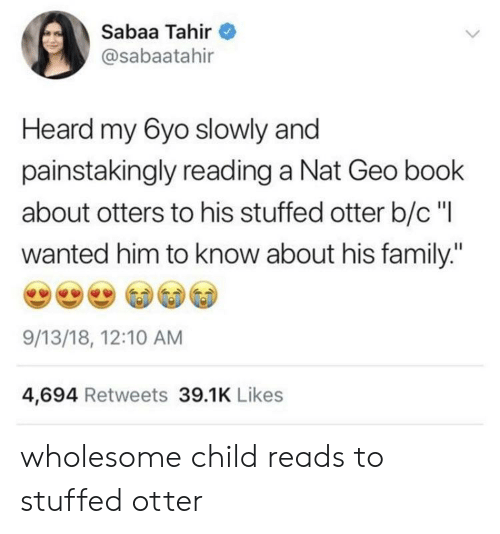 """otter: Sabaa Tahir  @sabaatahir  Heard my 6yo slowly and  painstakingly reading a Nat Geo book  about otters to his stuffed otter b/c""""l  wanted him to know about his family:""""  9/13/18, 12:10 AM  4,694 Retweets 39.1K Likes wholesome child reads to stuffed otter"""