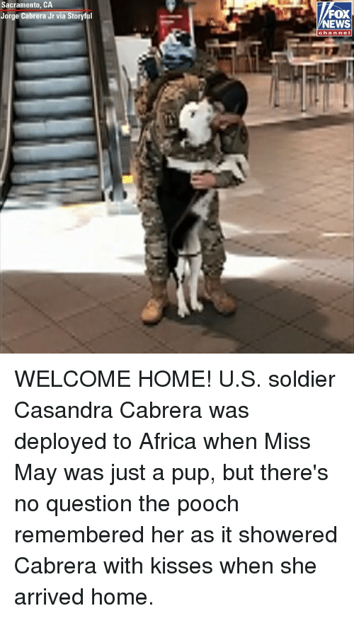 Africa, Memes, and News: Sacramento, CA  Jorge Cabrera Jr via Storyful  FOX  NEWS  channel WELCOME HOME! U.S. soldier Casandra Cabrera was deployed to Africa when Miss May was just a pup, but there's no question the pooch remembered her as it showered Cabrera with kisses when she arrived home.