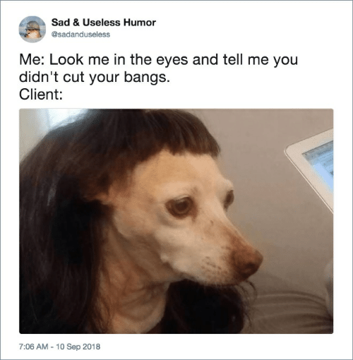 Sad, Sep, and You: Sad & Useless Humor  @sadanduseless  Me: Look me in the eyes and tell me you  didn't cut your bangs.  Client:  7:06 AM 10 Sep 2018