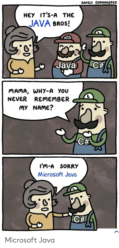 Ich: SAFELY ENDANGERED  НЕУ IT'S-A THE  JAVA BROS!  C#  Javal  MAMA, WHY-A You  NEVER REMEMBER  MY NAME?  C#  I'm-A SORRY  Microsoft Java  ICH Microsoft Java
