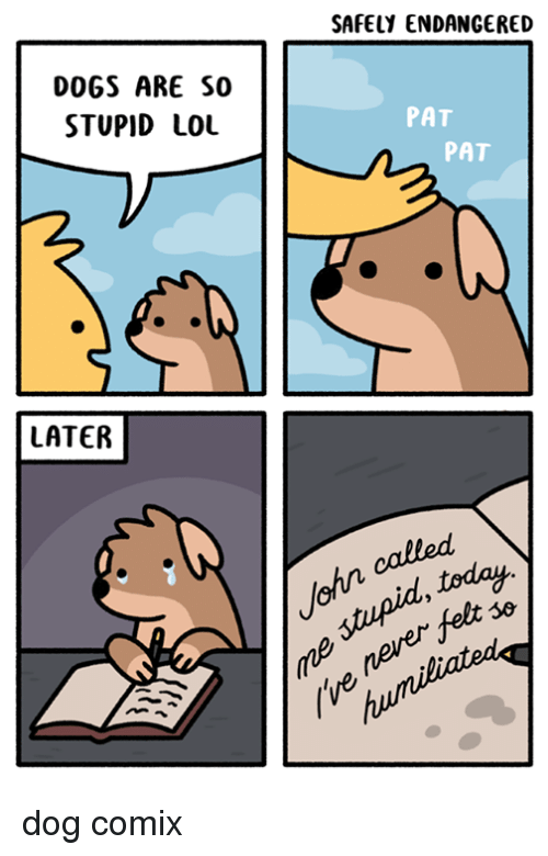 Fetli: SAFELY ENDANGERED  DOGS ARE SO  STUPID LOL  PAT  PAT  LATER  stupid, today  never fet  (ve  ohn calle dog comix