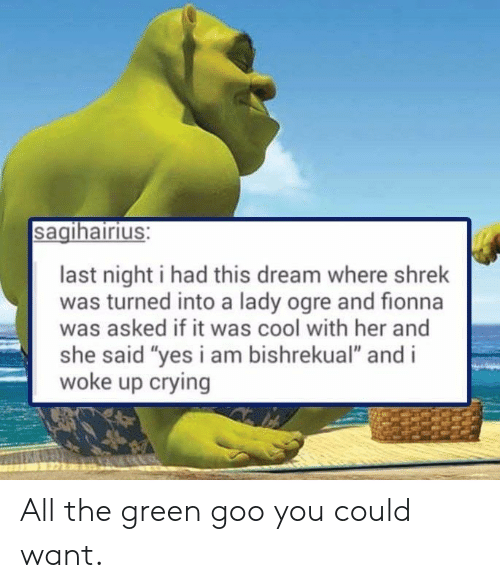 "Crying, Shrek, and Cool: sagihairius:  last night i had this dream where shrek  was turned into a lady ogre and fionna  was asked if it was cool with her and  she said ""yes i am bishrekual"" and i  woke up crying All the green goo you could want."