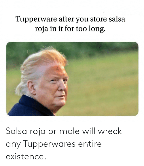 salsa: Salsa roja or mole will wreck any Tupperwares entire existence.