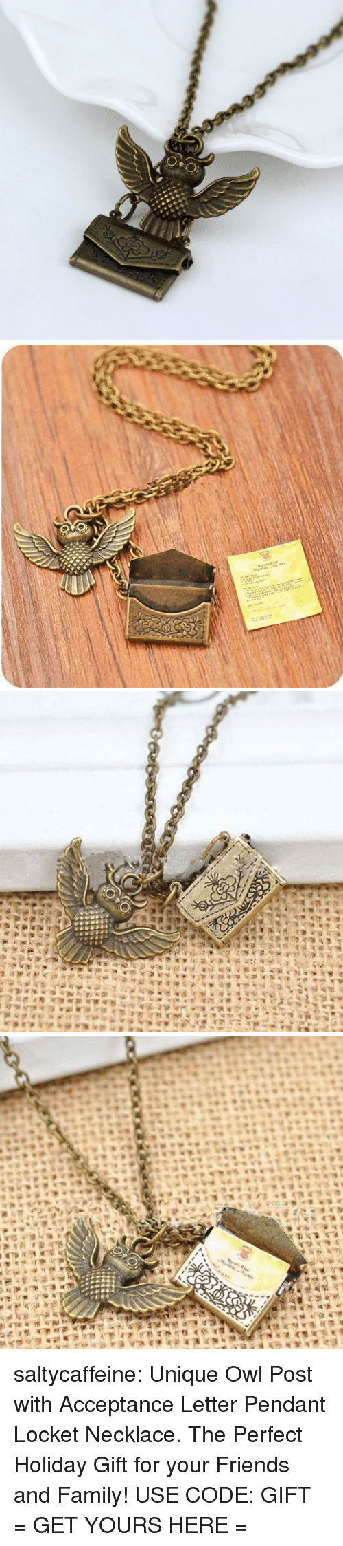 Family, Friends, and Tumblr: saltycaffeine: Unique Owl Post with Acceptance Letter Pendant Locket Necklace. The Perfect Holiday Gift for your Friends and Family! USE CODE: GIFT = GET YOURS HERE =