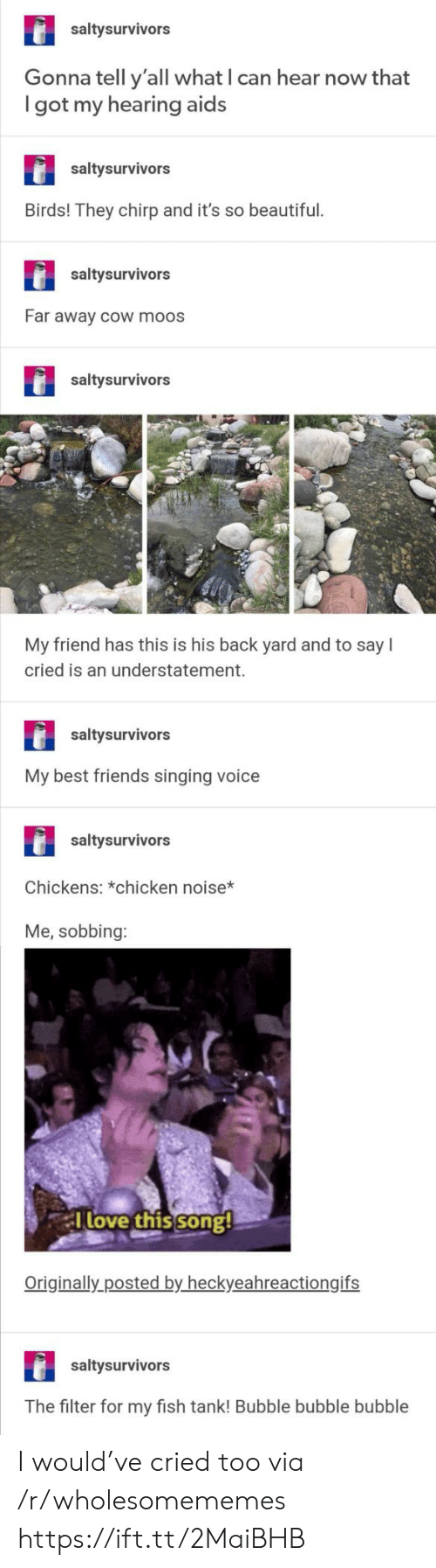 filter: saltysurvivors  Gonna tell y'all what I can hear now that  got my hearing aids  saltysurvivors  Birds! They chirp and it's so beautiful.  saltysurvivors  Far away cOw moos  saltysurvivors  My friend has this is his back yard and to say  cried is an understatement.  saltysurvivors  My best friends singing voice  saltysurvivors  Chickens: *chicken noise*  Me, sobbing:  Tlove this song!  Originally posted by heckyeahreactiongifs  saltysurvivors  The filter for my fish tank! Bubble bubble bubble I would've cried too via /r/wholesomememes https://ift.tt/2MaiBHB