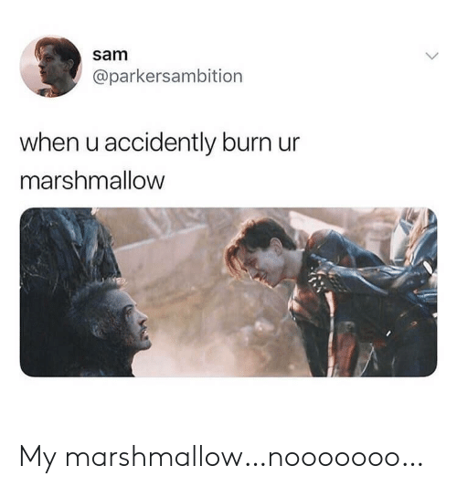 Marshmallow, Sam, and When U: sam  @parkersambition  when u accidently burn ur  marshmallow My marshmallow…nooooooo…