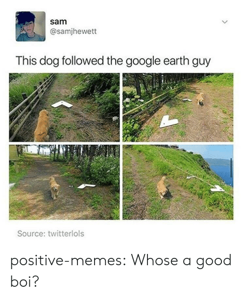 Google Earth: sam  @samjhewett  This dog followed the google earth guy  Source: twitterlols positive-memes:  Whose a good boi?
