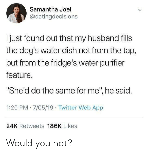 "Dogs, Twitter, and Dish: Samantha Joel  @datingdecisions  I just found out that my husband fills  the dog's water dish not from the tap,  but from the fridge's water purifier  feature.  ""She'd do the same for me"", he said.  1:20 PM 7/05/19 Twitter Web App  24K Retweets 186K Likes Would you not?"