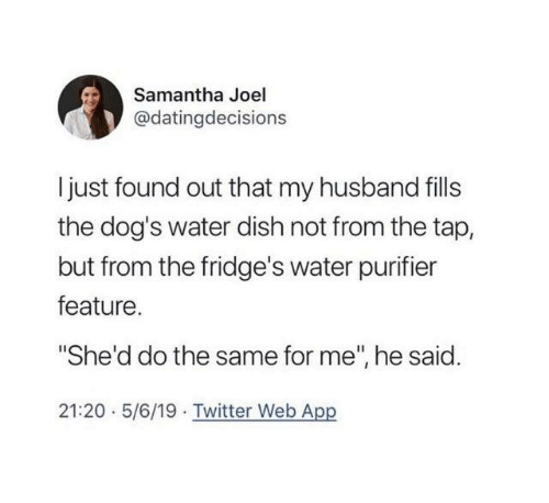 """Dank, Dogs, and Twitter: Samantha Joel  @datingdecisions  Ijust found out that my husband fills  the dog's water dish not from the tap,  but from the fridge's water purifier  feature.  """"She'd do the same for me"""", he said.  21:20 5/6/19 Twitter Web App"""