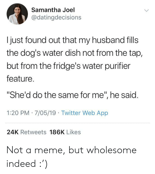"Dogs, Meme, and Twitter: Samantha Joel  @datingdecisions  l just found out that my husband fills  the dog's water dish not from the tap,  but from the fridge's water purifier  feature  ""She'd do the same for me"", he said  1:20 PM 7/05/19 Twitter Web App  24K Retweets 186K Likes Not a meme, but wholesome indeed :')"