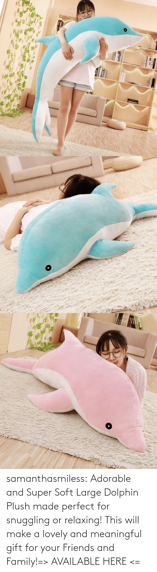 family: samanthasmiless:  Adorable and Super Soft Large Dolphin Plush made perfect for snuggling or relaxing! This will make a lovely and meaningful gift for your Friends and Family!=> AVAILABLE HERE <=