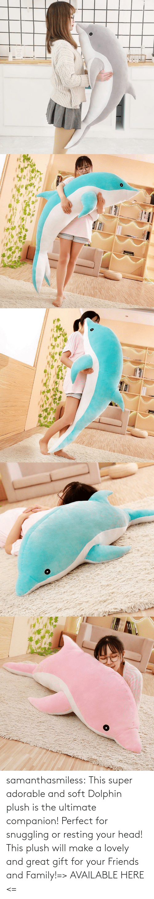 family: samanthasmiless:  This super adorable and soft Dolphin plush is the ultimate companion! Perfect for snuggling or resting your head! This plush will make a lovely and great gift for your Friends and Family!=> AVAILABLE HERE <=