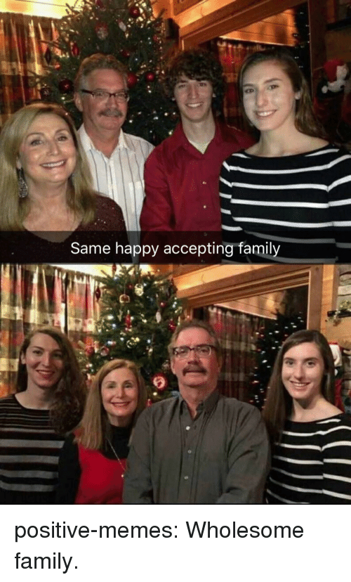 Family, Memes, and Tumblr: Same happy accepting family positive-memes:  Wholesome family.