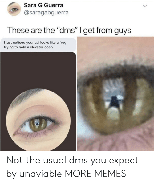 """Dank, Memes, and Target: Sara G Guerra  @saragabguerra  These are the """"dms"""" I get from guys  I just noticed your avi looks like a frog  trying to hold a elevator open Not the usual dms you expect by unaviable MORE MEMES"""